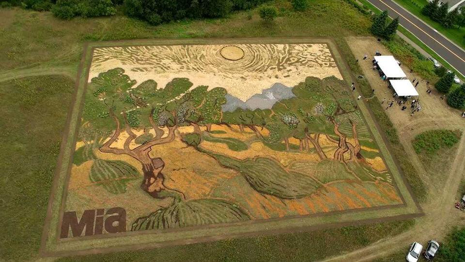 У США створили копію картини Ван Гога площею півгектара