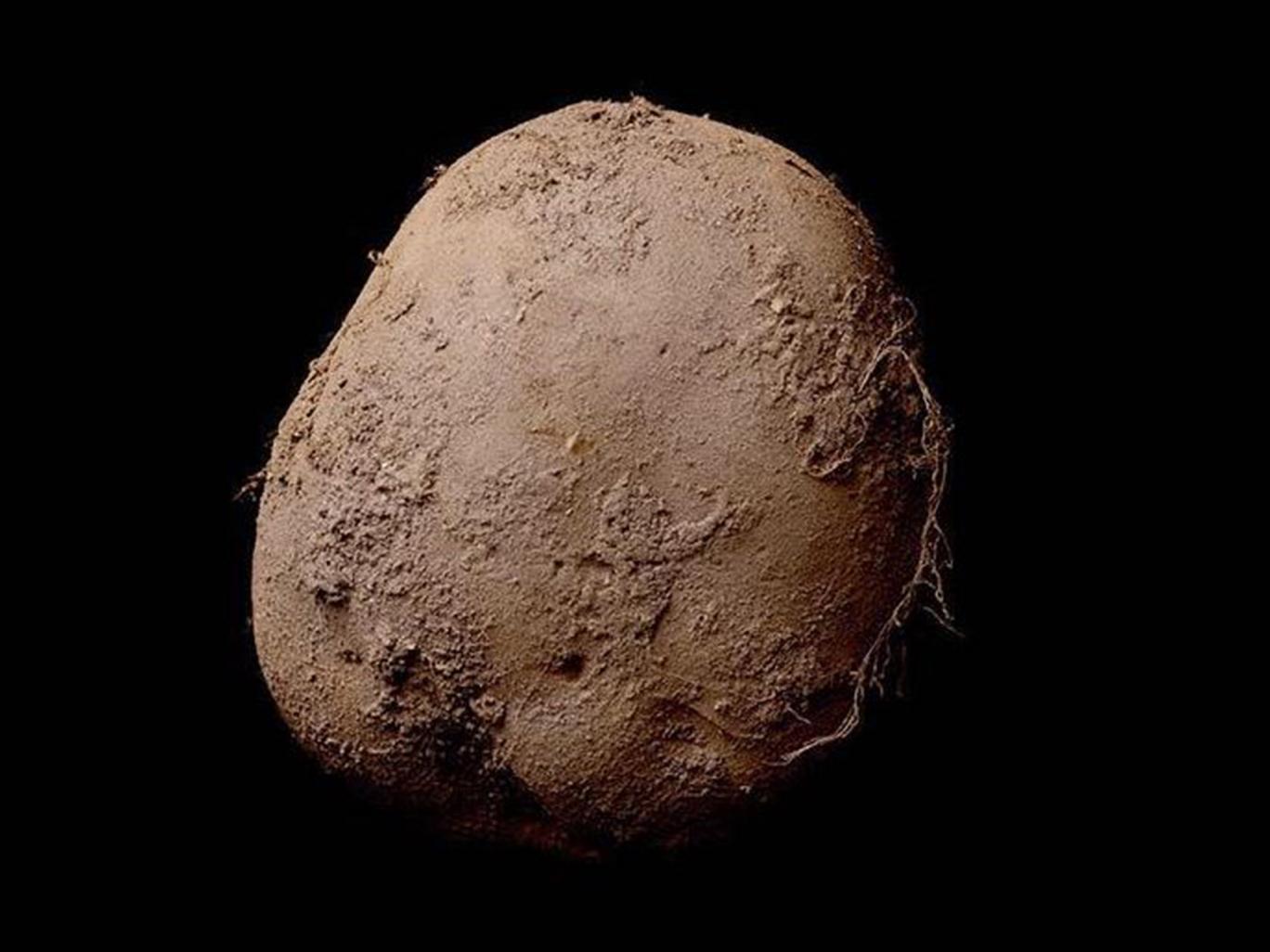 Ірландський фотограф продав світлину картоплини за мільйон євро