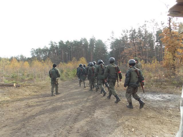 На Волині посилюється охорона лісу від нелегальних копачів