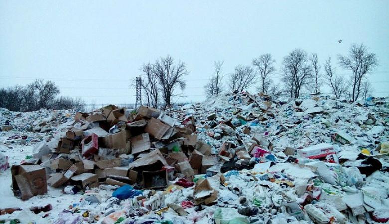 Мешканку смітника в російському Заполяр'ї відправили за ґрати через невиплату аліментів