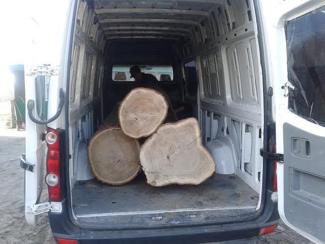 На Волині у Ківерцівському районі затримали перекупника лісу