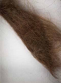 Найбільший пучок волосся Джона Леннона продадуть на аукціоні