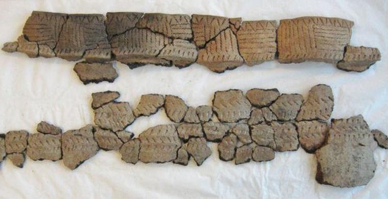 В Англії борсук викопав артефакти бронзового віку