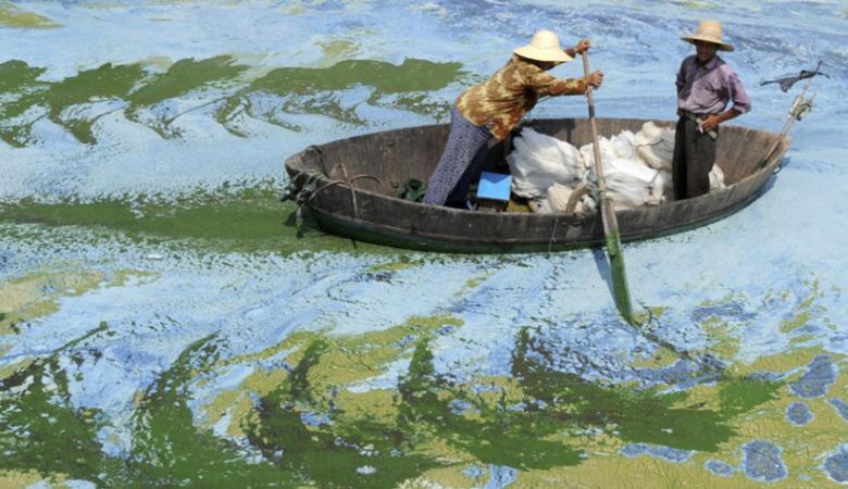 Китайський рибалка виловив у морі сім древніх порцелянових чаш