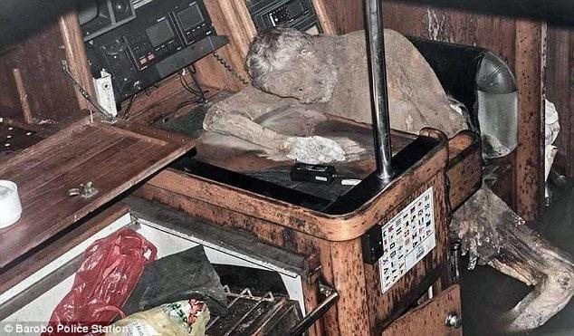 У Тихому океані знайшли яхту із мумією німецького яхтсмена