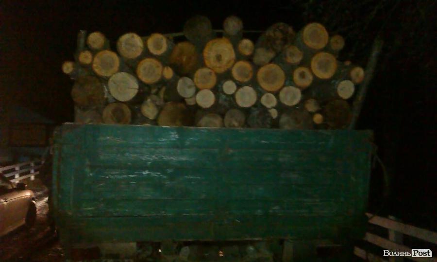 Група осіб на Маневиччині організувала незаконний лісовий бізнес