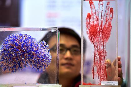 У Китаї похоронне бюро почало друкувати на 3D-принтері відсутні частини тіл небіжчиків