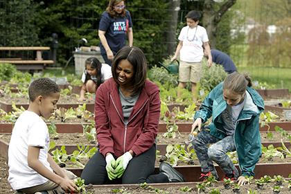 Мішель Обама в останній раз засіяла грядки біля Білого дому