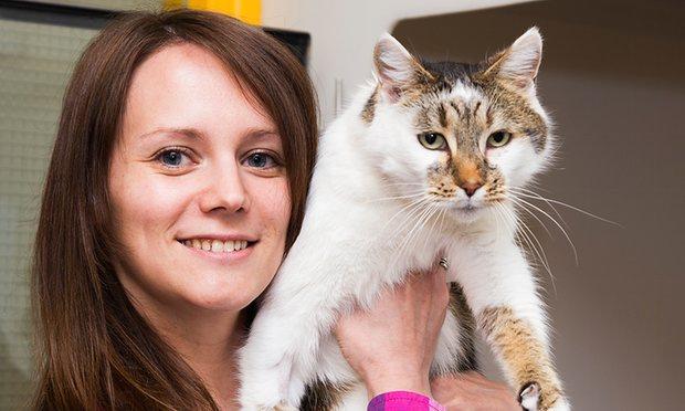У Британії кішка возз'єдналася з господинею через шість років після зникнення