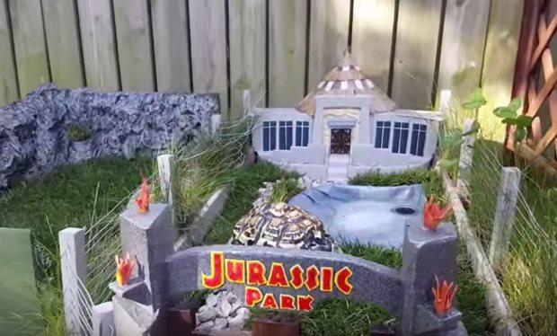 Для домашньої черепахи побудували копію Парку Юрського періоду (відео)