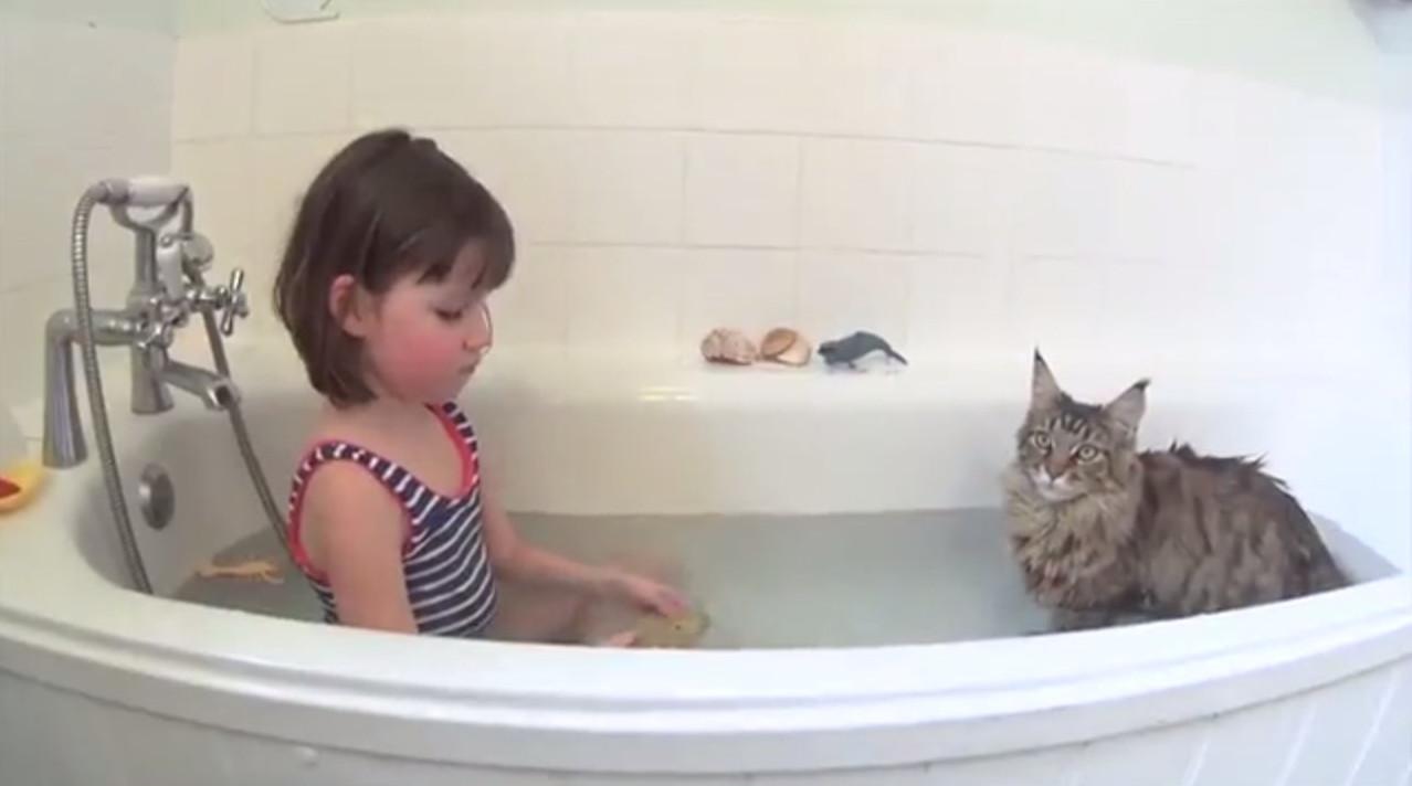 Кішка навчила дівчинку-аутиста плавати (відео)