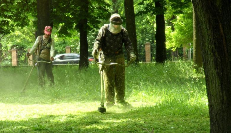 Листоноші у Фінляндії будуть не тільки розносити пошту, а й стригти газони