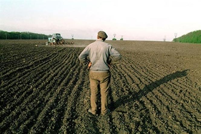 У 2017 році Мінагрополітики пропонує спрямувати близько 3 млрд. грн на підтримку малих та середніх фермерів