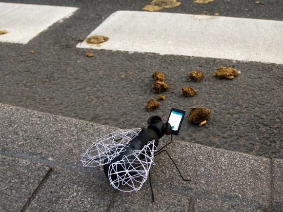 Росіянин звинуватив у скоєній ним автоаварії муху