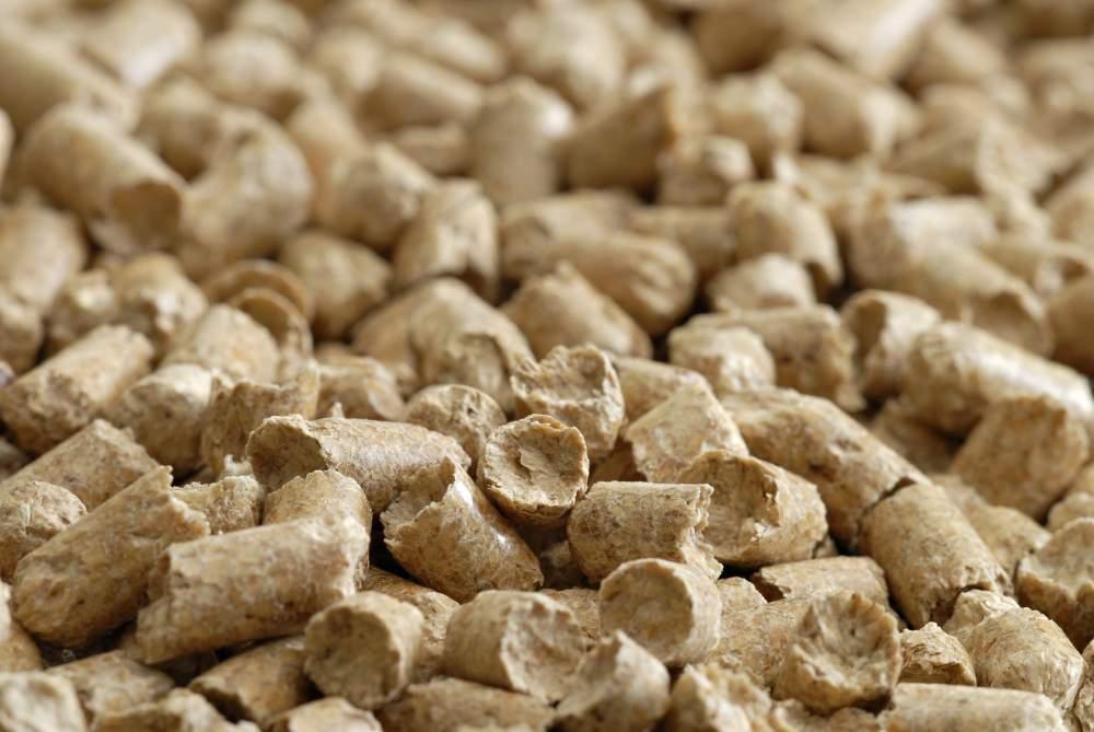 Китай визначився, яку сільгосппродукцію готовий купувати в Україні
