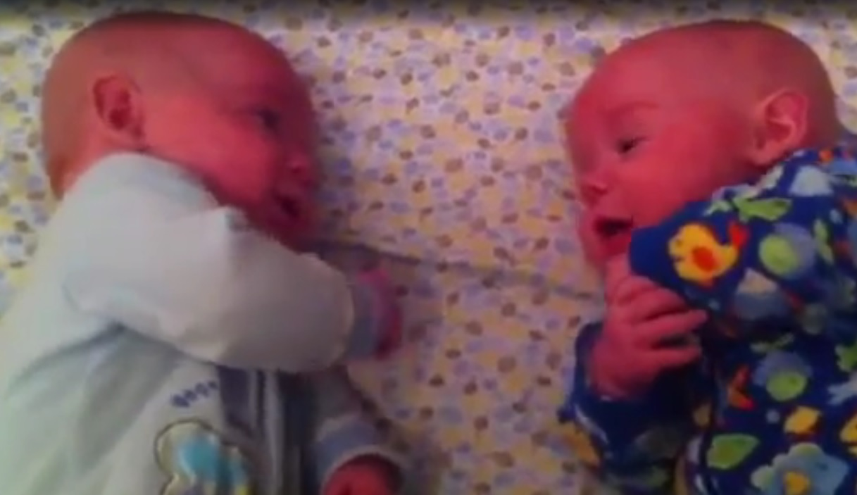 Відео з «вдумливою бесідою» крихіток-близнюків зворушило Мережу