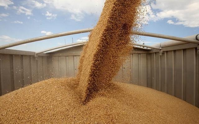 Україна експортувала майже 36,5 млн тонн зерна