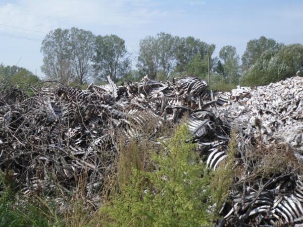 Волинь на межі екологічної катастрофи