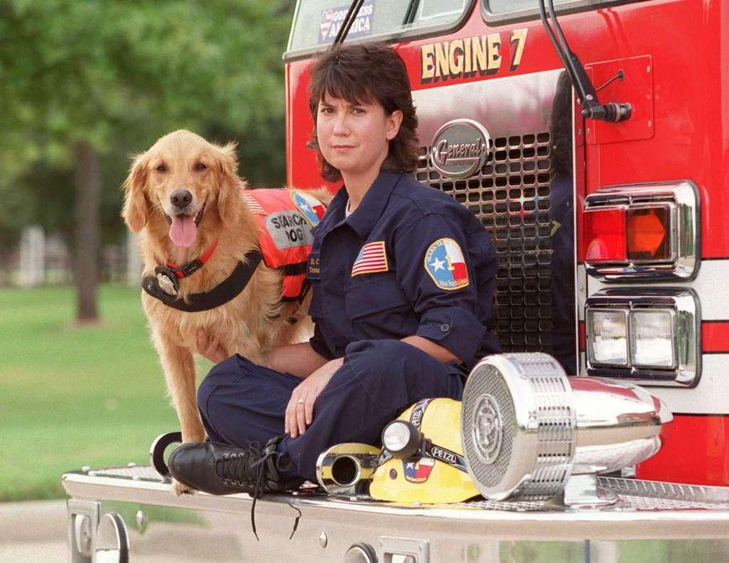 Померла остання собака, котра рятувала людей у Нью-Йорку 11 вересня 2001 року