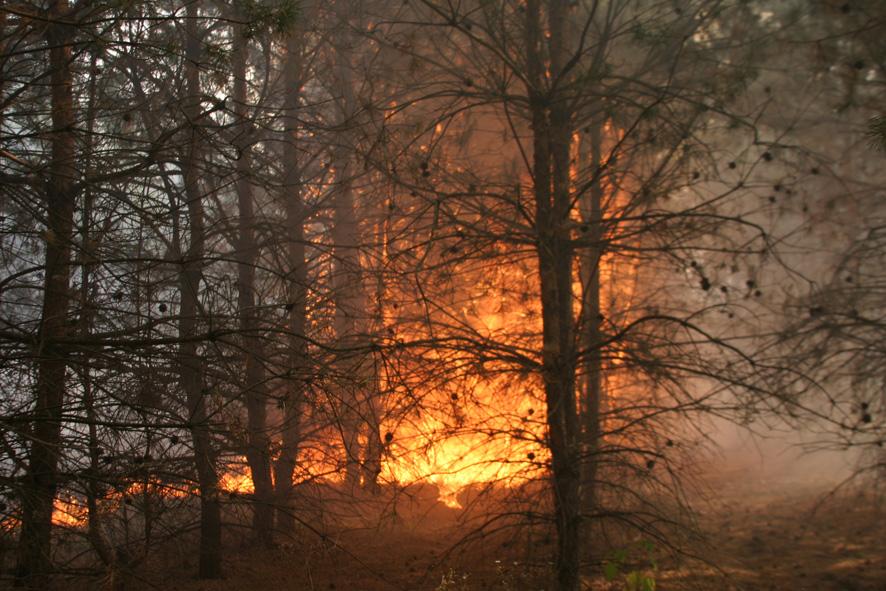 На Волині зберігається 5-ий клас пожежної небезпеки