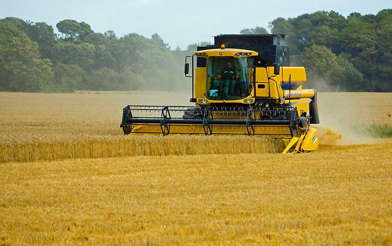 В Україні намолочено 37,6 млн тонн зерна