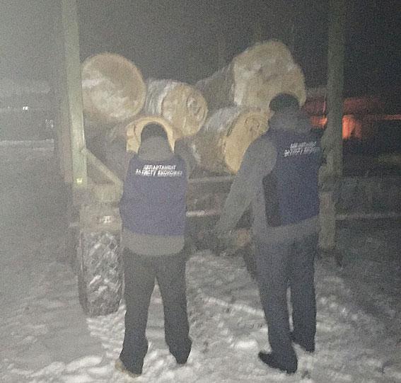 На Житомирщині рубали ліс, а посадовці робили вигляд, що не помічають