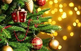 До Нового року у Луцьку заплановано багато яскравих дійств