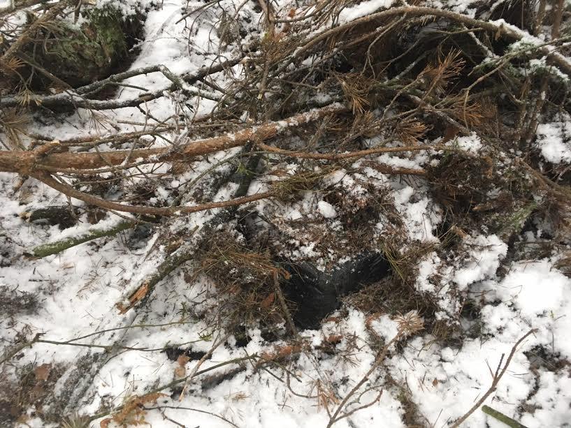 Поблизу кордону з Польщею у лісі серед снігу знайдено сховки з сигаретами