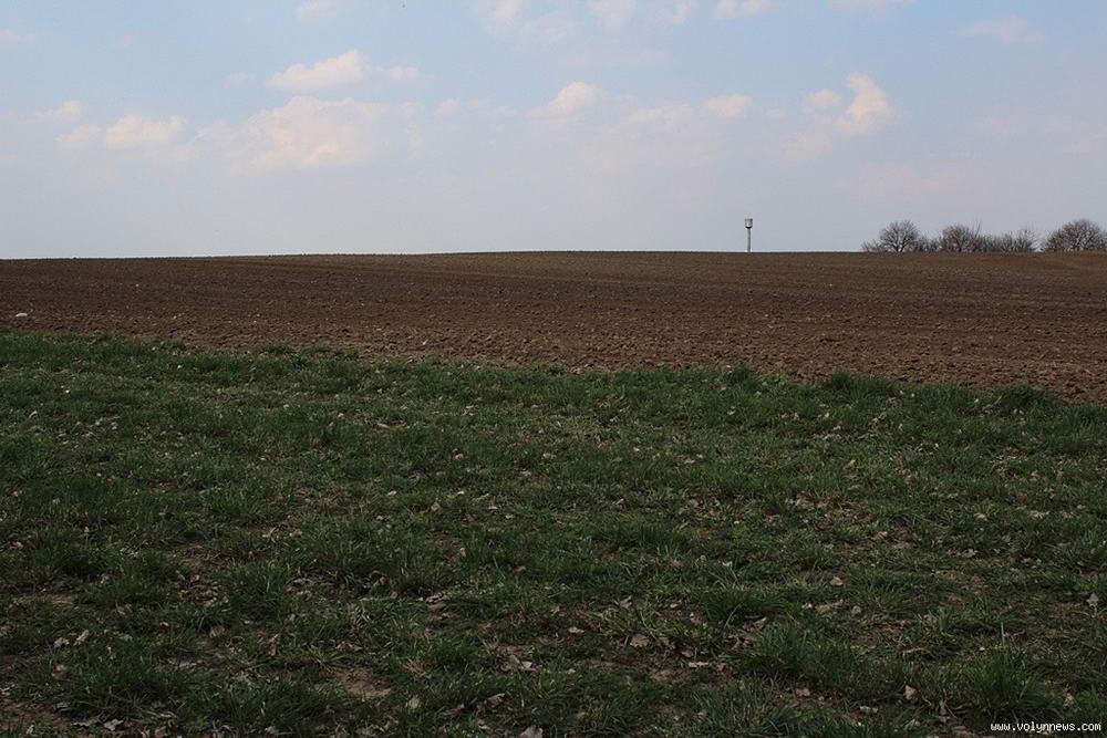 Гектар волинської землі коштує 1000 доларів