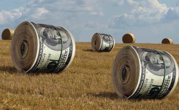 Земельна реформа: юридичні особи та іноземці не будуть допущені до земельного аукціону