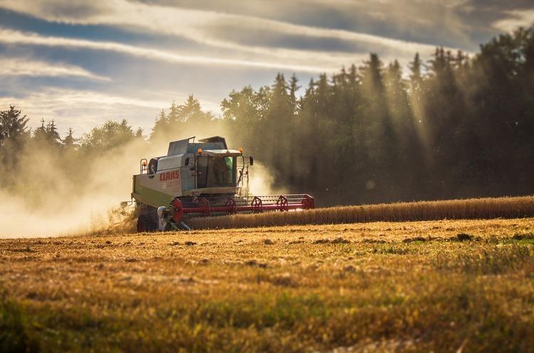 Зафіксовано найвищу врожайність ячменю, жита та ріпаку в Україні