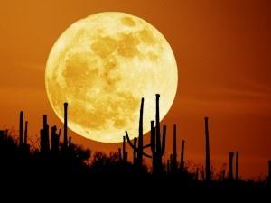 Сьогодні ввечері буде найяскравіший Місяць у році