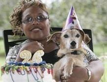 Найстаріший в світі пес святкує 26-річчя