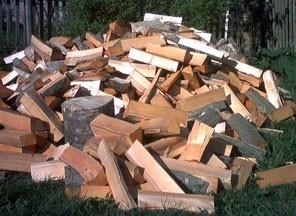 Житомирські вчені навчилися їздити на дровах