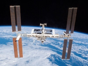 Космонавти візьмуть із собою в космос чорного кота Дімлера