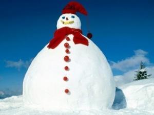 Шотландську сім'ю заарештували за ліплення сніговика