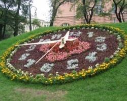 В центрі Києва встановлять 20-метровий квітковий годинник