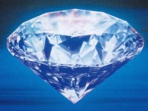 Собака з'їв діамант вартістю 20 тисяч доларів