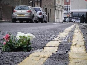 Вибоїни на дорогах у Лондоні засаджують квітами