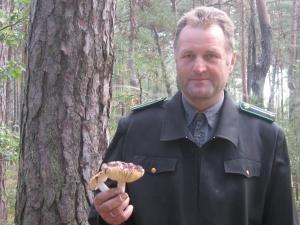 Старовижівський лісгосп успішно вирощує нові ліси